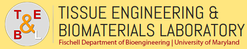 Tissue Engineering & Biomaterials Laboratory | University of Maryland